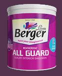Berger Express Weathercoat All Guard